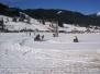 1.Skijöring in Gosau am 26.1.2008 (1.Lauf zum BMW Skijöring Cup)
